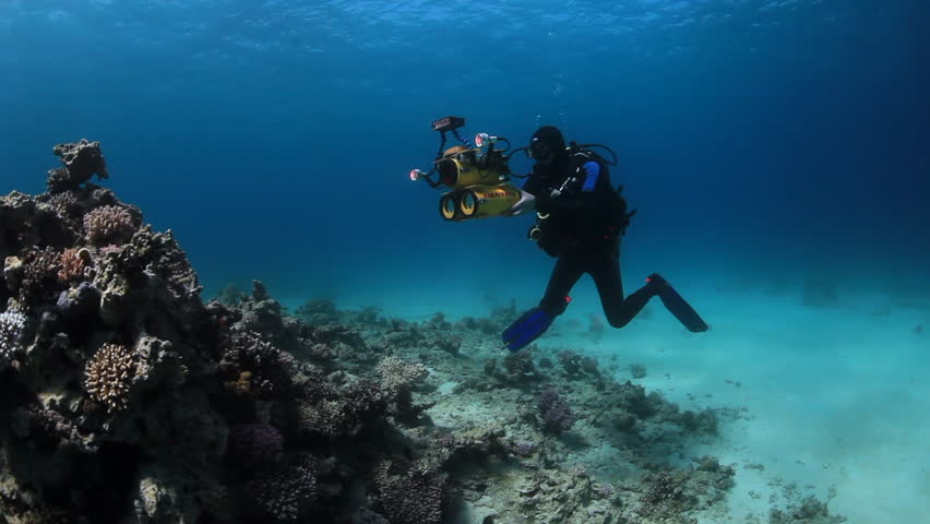 Egypt - 01 March 2012: Cameraman diver swimming on sandy bottom deep underwater in Red sea. World of colorful beautiful wildlife of reefs and algae. Inhabitants in search of food. Abyssal diving. | Shutterstock HD Video #24654545