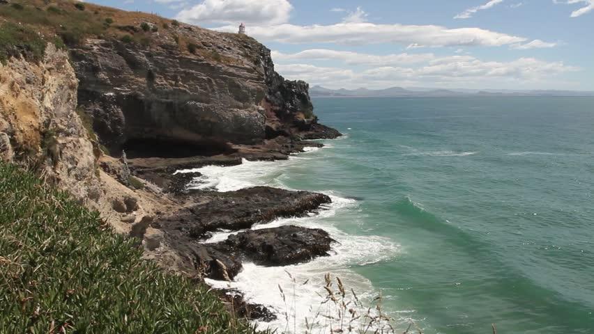 Steep cliff with lighthouse and wave action, kelp beds along, rough sea. new zealand