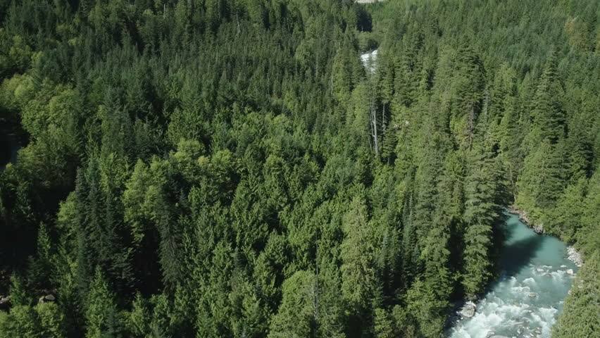 Aerial - Blue river and forest in a classic moutain valley - Pacific Northwest Canada