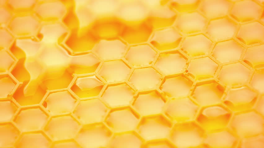 Honey comb. Fragment of plastic honeycomb  imitation. Abstract background.