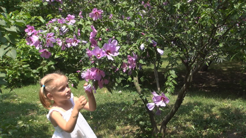 Child Smelling and Playing with Flowers in Park, Child Sneezing because of the Pollen