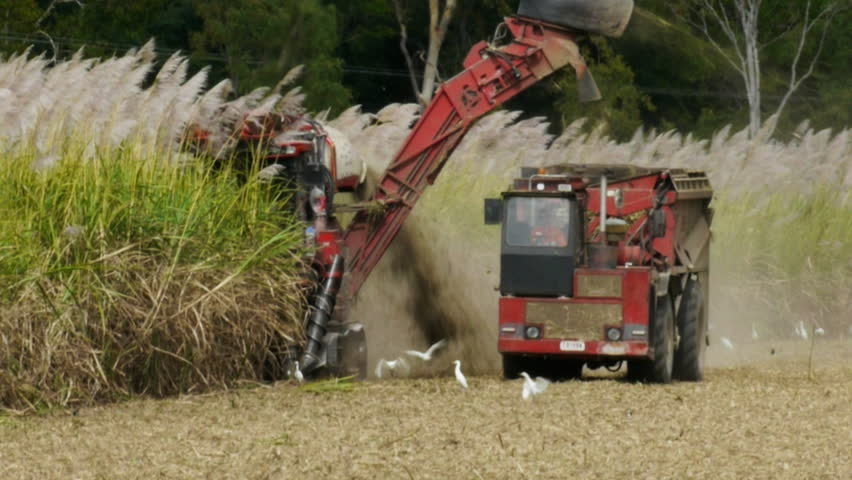 a sugar cane harvester and truck cut cane in far north Queensland, Australia