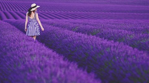 Woman Walking in an Endless Lavender Field. SLOW MOTION 120 FPS. Unrecognizable girl in a hat, enjoying nature in a blooming lavender field. Plateau du Valensole, Provence, South France, Europe.