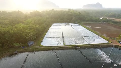 Aerial: Shrimp and Prawn Farm Pool Pond. Seafood Industry in Phang Nga, Thailand. HD, Slowmotion.