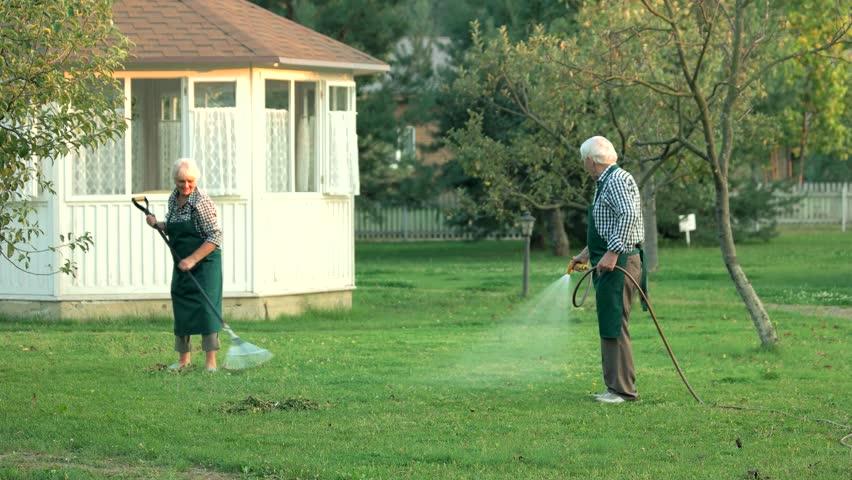 Senior man with garden hose. Gardeners at work. | Shutterstock HD Video #25695062