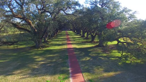 Aerial view of Oak Alley Plantation, Louisiana.