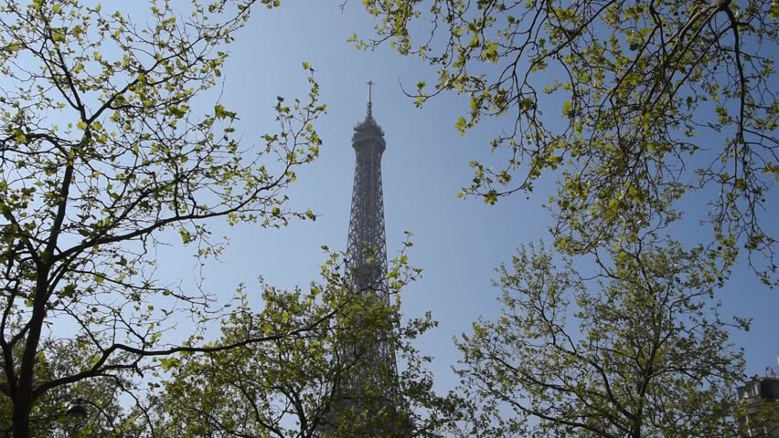 Cityscape of Paris. Branches of the trees and the silhouette of the Eiffel Tower. | Shutterstock HD Video #25830272