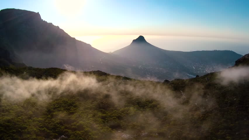 Drone reveal trough the trees on Signal hill into Cape Town city during sunrise. | Shutterstock HD Video #26081642