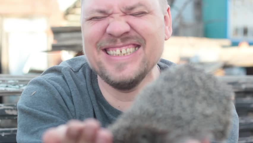 The man laughs when a hedgehog bites his fingers