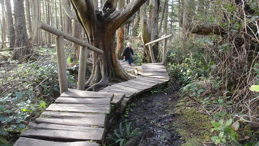 children exploring fantastical forest on boardwalk trail