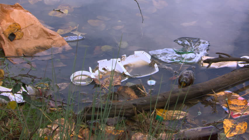 Litter floats on water near river bank, close-up of broken styrofoam container