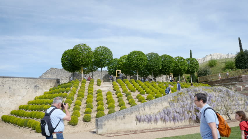 AMBOISE, FRANCE - CIRCA 2017: People visiting the majestic gardens of the Amboise Chateau Le jardin du Chateau royal d'Amboise taking photos and admiring the trees and bushes and fresh wisteria plant