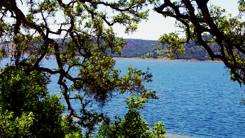 New Melones Lake seen through the branches of an oak tree is a reservoir
