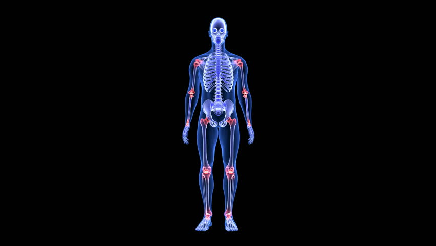 xray of human skeleton jumping freestyle with skateboard in,