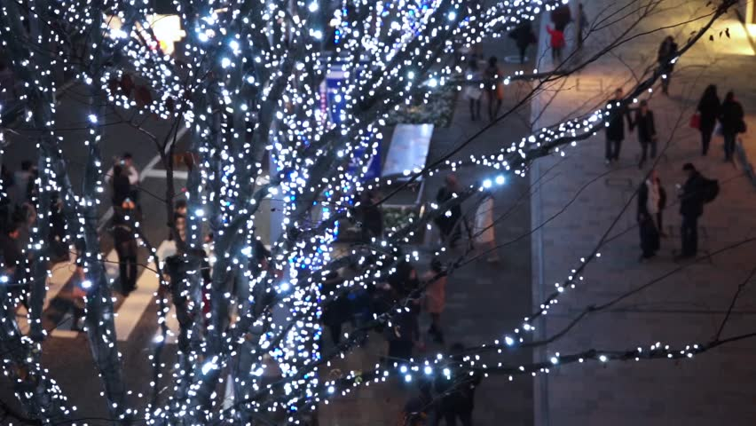 Winter city illumination   Shutterstock HD Video #27548932