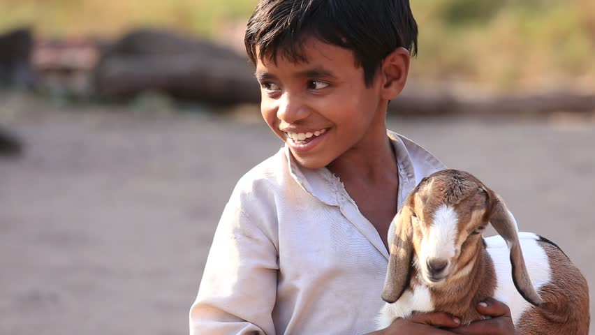 MANDU, INDIA - FEBRUARY 03, 2017 : Unidentified Indian boy on the street with goatling. Poverty is a major issue in India