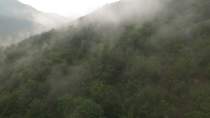 Morning fog clouds close to mountain fores. Tara river canyon. Best of Montenegro beautiful nature Europe sightseeing's. Summer. Cinematic Aerial drone 4k footage.