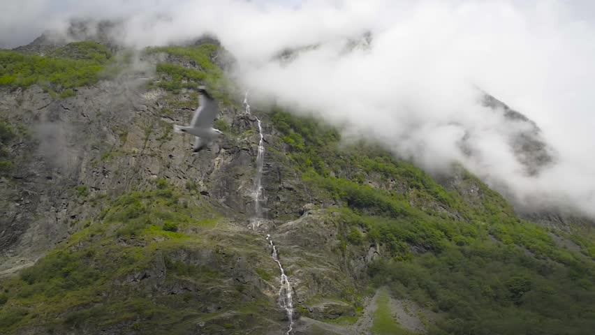 Waterfalls pouring water in Sognefjord, Norway - HD stock footage clip