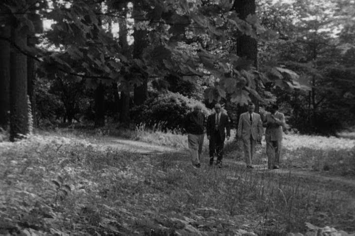 1950s: Theoretical physicist Albert Einstein walks with Dr. Hideki Yukawa and other scientists, talking, in 1954.