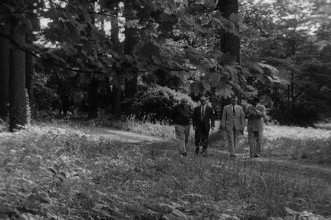 1950s: Theoretical physicist Albert Einstein walks with Dr. Hideki Yukawa and other scientists, talking, in 1954.