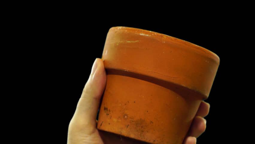 A garden pot. PNG alpha background. Prekeyed. | Shutterstock HD Video #28185622