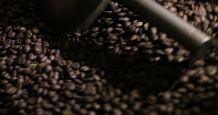 Units manufactory fruit seeds