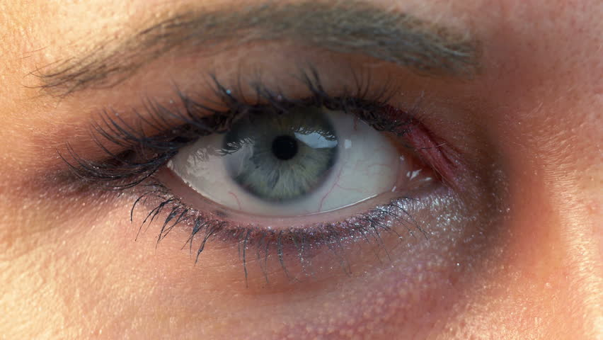 High quality video of human eye With eyeshadow in 4K | Shutterstock HD Video #28534552