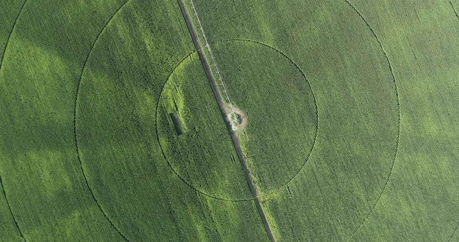 High aerial view of irrigation patterns in corn field | Shutterstock HD Video #28855918