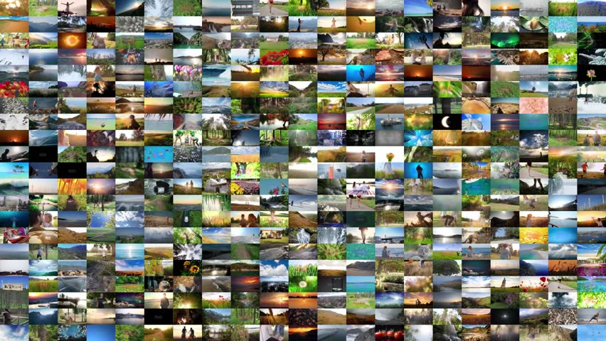 Natural video wall natural green box natural landscape natural background forest   Shutterstock HD Video #28958392