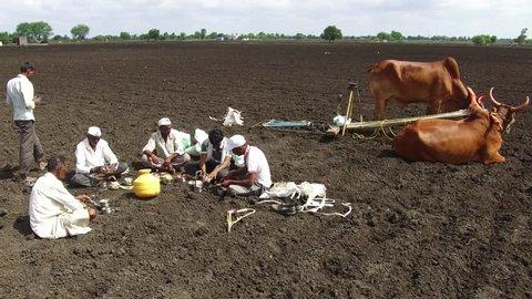 Farmers lunch break between sowing seeds in rural village Salunkwadi, Ambajogai, Beed, Maharashtra, India, Southeast Asia