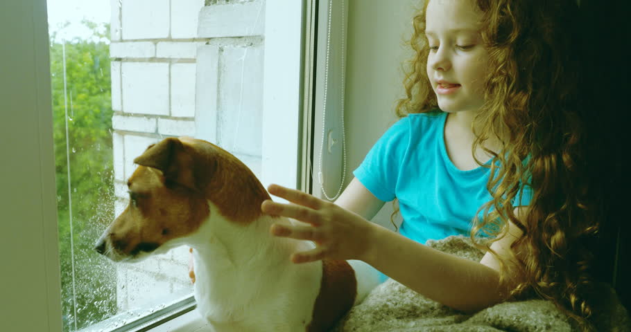 Girl and her puppy embracing and kissing on the window. | Shutterstock HD Video #29452222