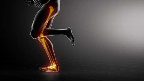 Running man - focused on leg joint,ankle,hip and knee