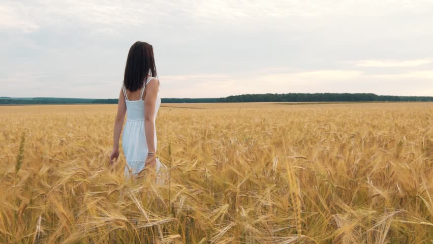A young girl stands in a Golden field of wheat at sunset and raises hands up, slow motion | Shutterstock HD Video #29552602