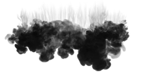 A lot of flows, black clouds or smoke, ink inject is isolated on white in slow motion. Black colour get through water. Inky background or smoke backdrop, for ink effects use luma matte like alpha mask