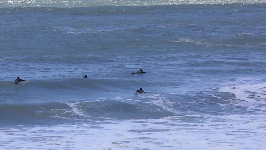 Unidentified Surfers At Ano Nuevo State Park California USA