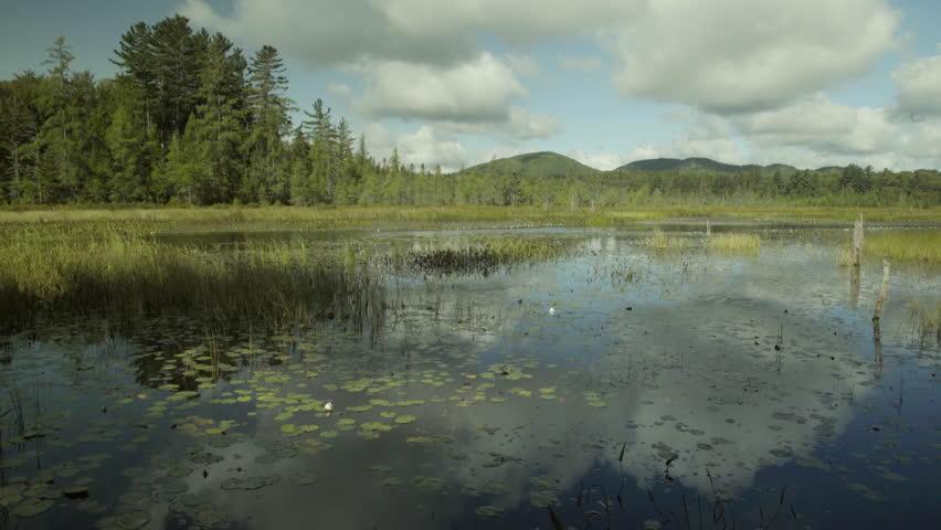 Lake reflecting beautiful skies.