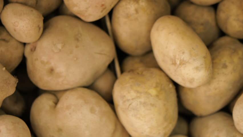 Russet Idaho potato pan shoot | Shutterstock HD Video #30379858