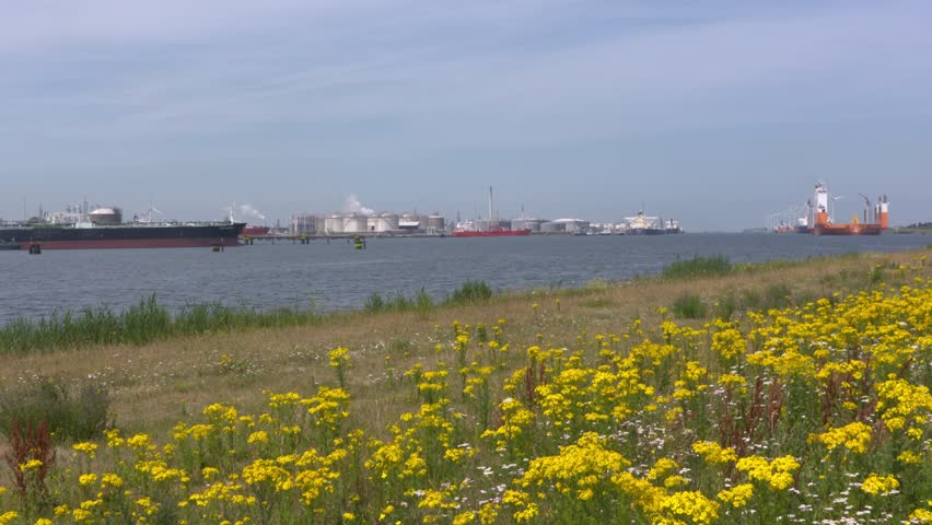 ROTTERDAM SEAPORT - JULY 2017: skyline petrochemical refineries and storage tanks of Europoort (gate to Europe) industrial area, facing west