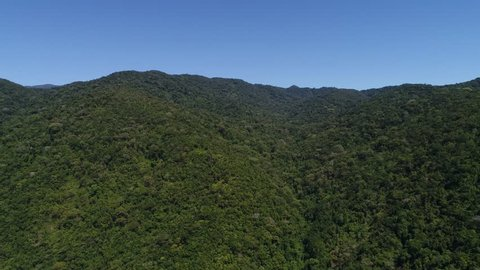 Flying Over Mountains and Forest