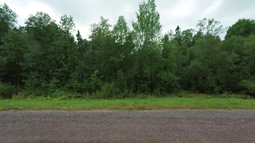 Side window perspective of a car ride along a gravelled country road. with grass and trees passing. FullHD footage