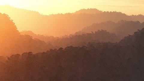 Jungle Sunset / Sunrise aerial 3D render