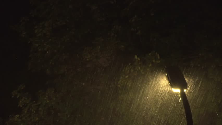 Streetlight In Massive Thunderstorm With Slow Motion Trees Moving Background