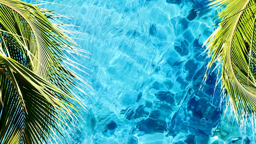 Palm Tree leaves and ocean water surface Beautiful summer tropical background Through Palm Leaves on a Blue Sky Background.  Smooth Motion.