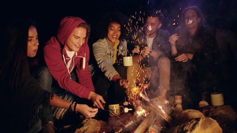 Group Of Happy Friends Around Burning Camping Bonfire In The Woods Roasting Marshmallows And Smiling Hiking Lifestyle Leisure Concept Slow Motion Shot On Red Epic W 8k