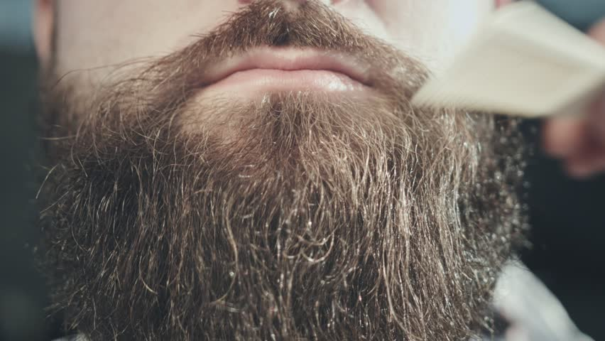 Man beard style. Close up of combing hair beard on face hipster. Bearded hipster face with moustache lips