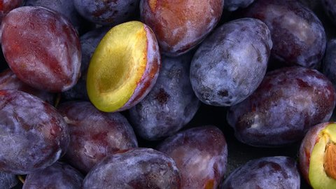 Some Plums rotating on a slate slab (4k; not loopable)