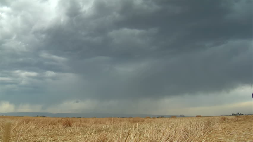 Stormy skies and lightning over wheat field | Shutterstock HD Video #31202752