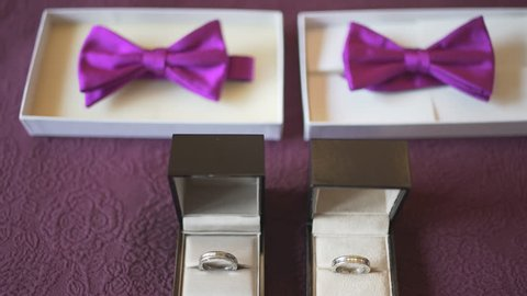 Slow dolly in shot of a couple of purple bow tie with two wedding rings of two homosexual men for the gay wedding ceremony.