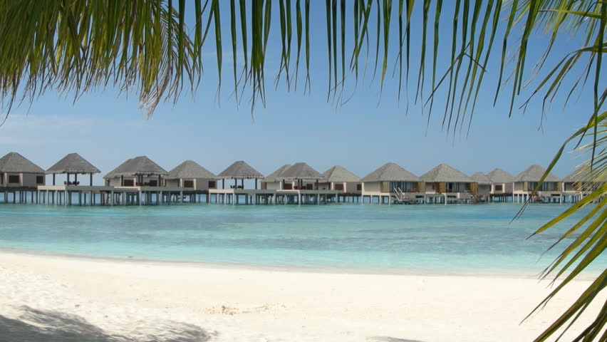 Row of thatched roof bungalows. built along a pier over the water. seen through tropical palm fronds in the Maldives. FullHD 1080p footage