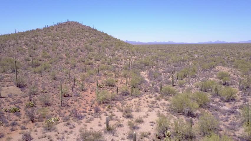 CIRCA 2010s - Saguaro National Park, Arizona - Aerial shot over desert cactus in Saguaro National Park near Tucson, Arizona.